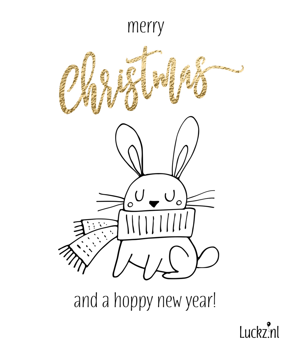 Merry Christmas and Hoppy Holidays, grappige kerstkaart konijntje, funny bunny christmas